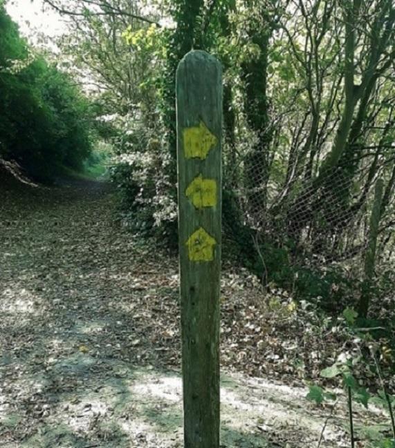 Signpost - Copy